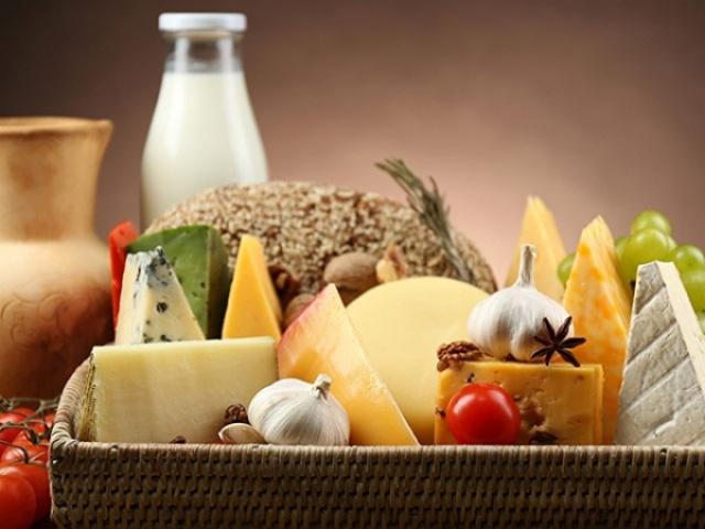 Ingredients for Cheese & Dairy Industry